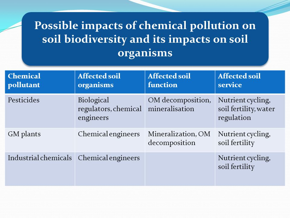 Chemical pollutant Affected soil organisms Affected soil function Affected soil service PesticidesBiological regulators, chemical engineers OM decomposition, mineralisation Nutrient cycling, soil fertility, water regulation GM plantsChemical engineersMineralization, OM decomposition Nutrient cycling, soil fertility Industrial chemicalsChemical engineersNutrient cycling, soil fertility Possible impacts of chemical pollution on soil biodiversity and its impacts on soil organisms