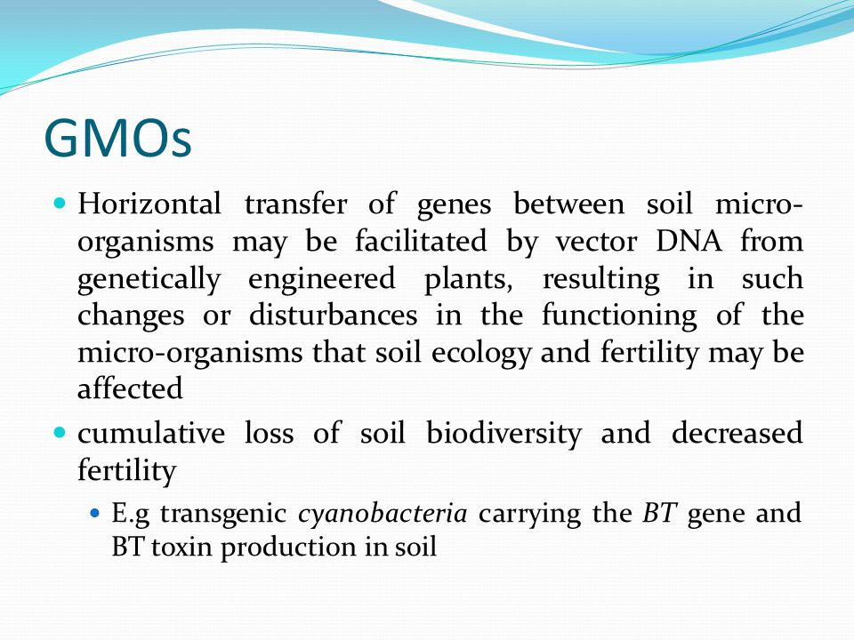 GMOs Horizontal transfer of genes between soil micro- organisms may be facilitated by vector DNA from genetically engineered plants, resulting in such changes or disturbances in the functioning of the micro-organisms that soil ecology and fertility may be affected cumulative loss of soil biodiversity and decreased fertility E.g transgenic cyanobacteria carrying the BT gene and BT toxin production in soil