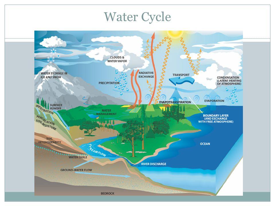 Biogeochemical Cycles & the Earth A. Water Cycle Water Cycle B. Carbon Cycle Carbon Cycle C. Nitrogen Nitrogen D. Sulfur Sulfur E. Phosphorus Phosphor