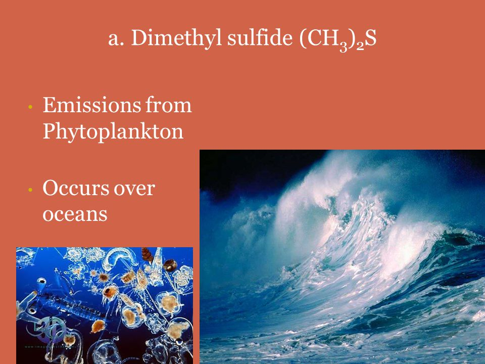 1. Key Compounds of the Sulfur Cycle a) Dimethyl sulfide Dimethyl sulfide b) Sulfur dioxide Sulfur dioxide c) Sulfur trioxide Sulfur trioxide d) Sulfu