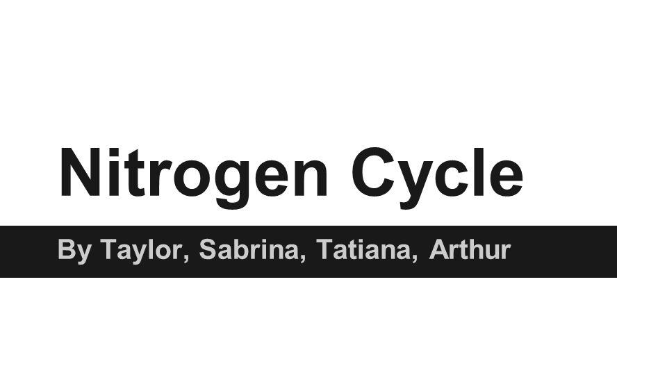 Nitrogen Cycle By Taylor, Sabrina, Tatiana, Arthur
