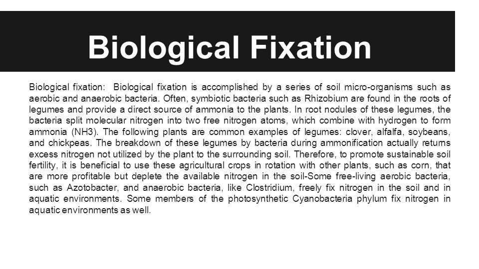 Biological Fixation Biological fixation: Biological fixation is accomplished by a series of soil micro-organisms such as aerobic and anaerobic bacteria.
