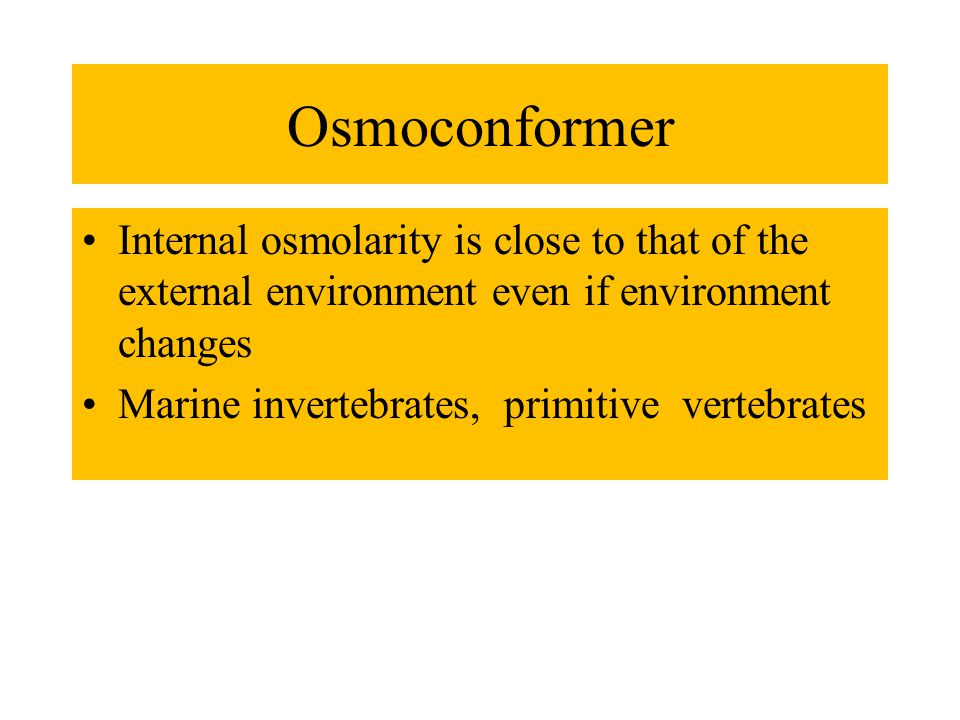 Osmoconformer Internal osmolarity is close to that of the external environment even if environment changes Marine invertebrates, primitive vertebrates