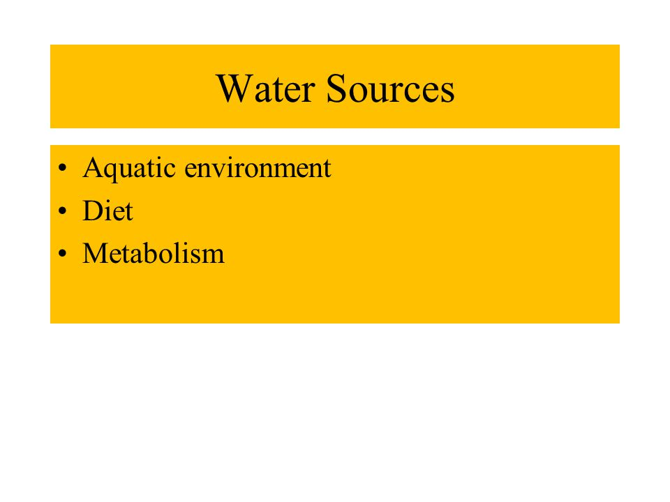 Water Sources Aquatic environment Diet Metabolism