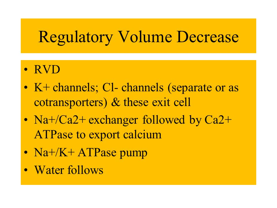 Regulatory Volume Decrease RVD K+ channels; Cl- channels (separate or as cotransporters) & these exit cell Na+/Ca2+ exchanger followed by Ca2+ ATPase to export calcium Na+/K+ ATPase pump Water follows