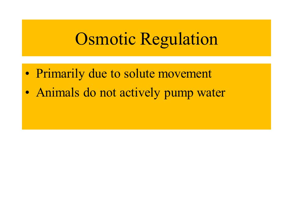 Osmotic Regulation Primarily due to solute movement Animals do not actively pump water