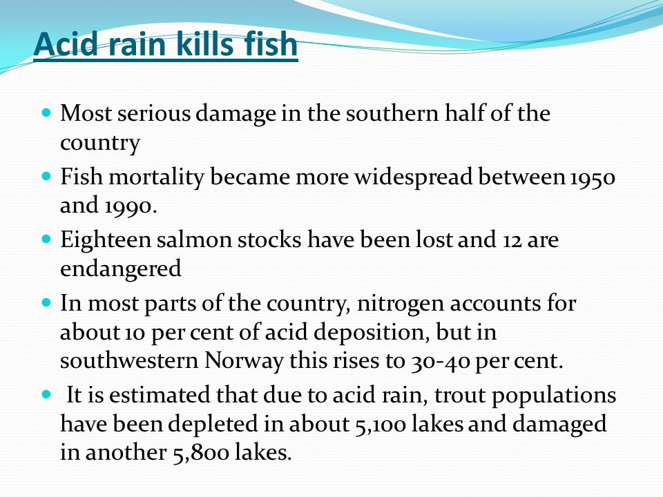 Acid rain kills fish Most serious damage in the southern half of the country Fish mortality became more widespread between 1950 and 1990.