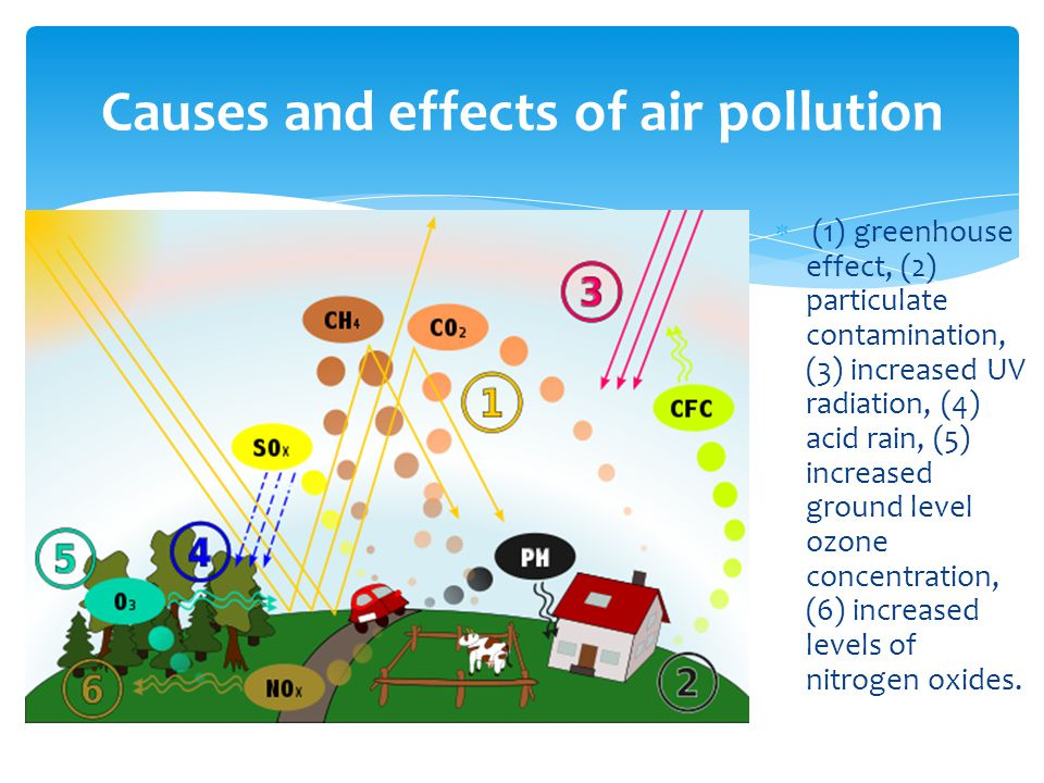  (1) greenhouse effect, (2) particulate contamination, (3) increased UV radiation, (4) acid rain, (5) increased ground level ozone concentration, (6) increased levels of nitrogen oxides.