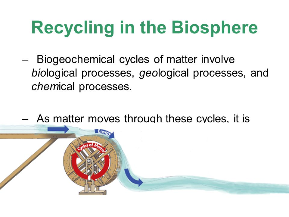 Recycling in the Biosphere –Biogeochemical cycles of matter involve biological processes, geological processes, and chemical processes.