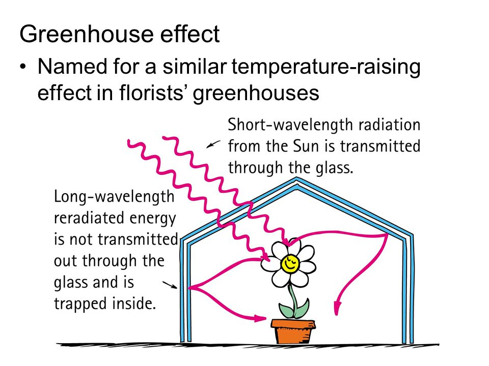 Greenhouse effect Named for a similar temperature-raising effect in florists' greenhouses
