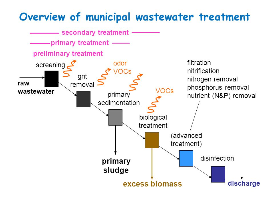Overview of municipal wastewater treatment biological treatment raw wastewater screening grit removal primary sedimentation disinfection discharge (ad