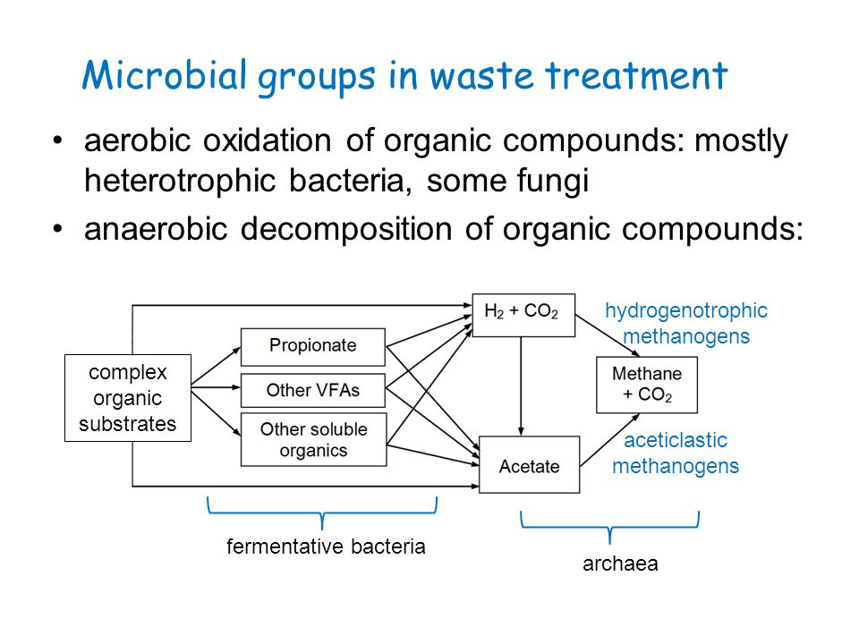 Microbial groups in waste treatment aerobic oxidation of organic compounds: mostly heterotrophic bacteria, some fungi anaerobic decomposition of organ