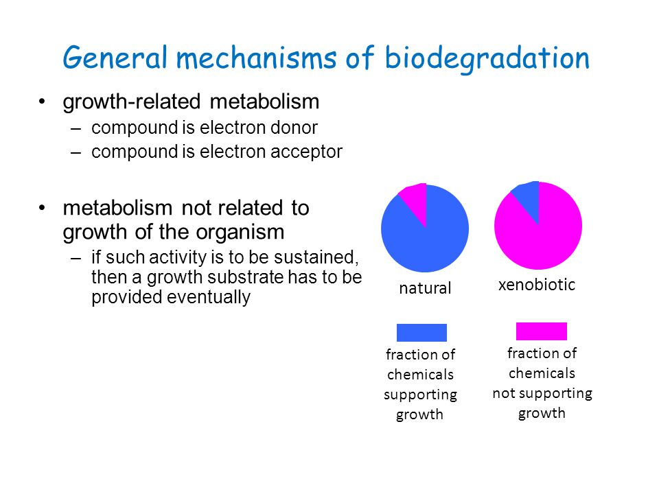 General mechanisms of biodegradation growth-related metabolism –compound is electron donor –compound is electron acceptor metabolism not related to gr