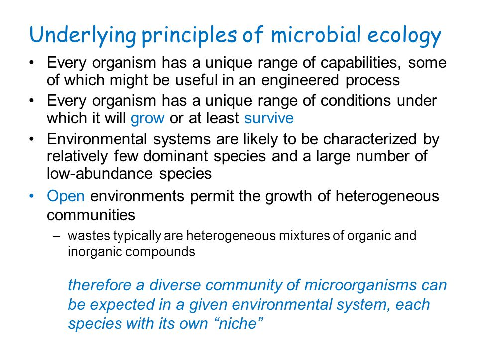 Factors influencing microbial communities Environmental conditions govern which organisms dominate (which organisms are selected) –major energy and carbon sources –dissolved oxygen concentration aerobes microaerophiles anaerobes –concentration of other electron acceptors (e.g., NO 3 -, SO 4 2-, Fe 3+ ) –pH (e.g., acidophiles) –temperature (psychrophiles, mesophiles, thermophiles) –salinity –availability of nutrients (e.g., sorbed to a surface or within a non-aqueous matrix vs.