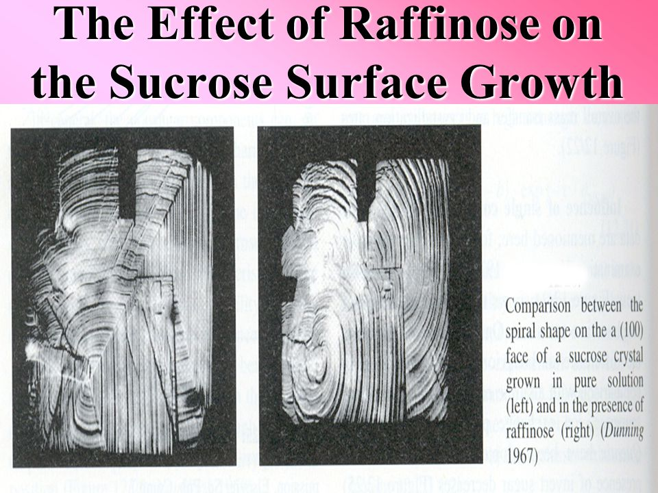 The Effect of Raffinose on the Sucrose Surface Growth