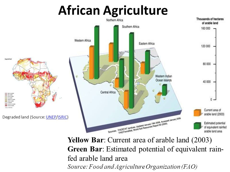 African Agriculture Degraded land (Source: UNEP/ISRIC)UNEPISRIC Yellow Bar: Current area of arable land (2003) Green Bar: Estimated potential of equivalent rain- fed arable land area Source: Food and Agriculture Organization (FAO)