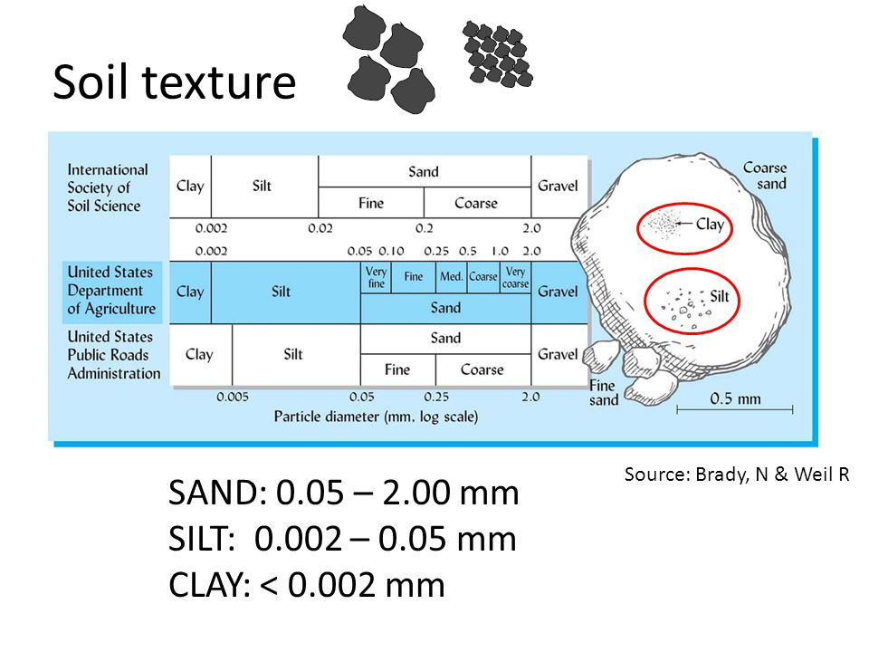 Soil texture SAND: 0.05 – 2.00 mm SILT: 0.002 – 0.05 mm CLAY: < 0.002 mm Source: Brady, N & Weil R