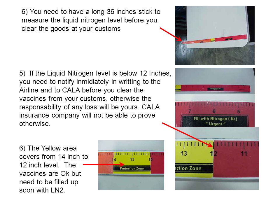 6) You need to have a long 36 inches stick to measure the liquid nitrogen level before you clear the goods at your customs 5) If the Liquid Nitrogen level is below 12 Inches, you need to notify inmidiately in writting to the Airline and to CALA before you clear the vaccines from your customs, otherwise the responsability of any loss will be yours.
