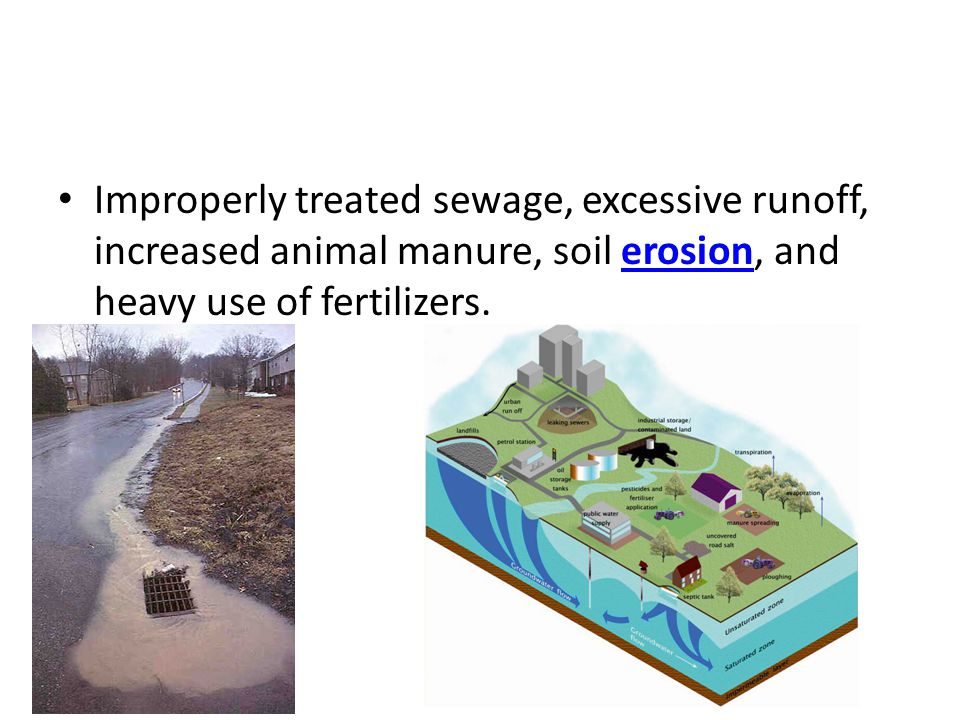 Improperly treated sewage, excessive runoff, increased animal manure, soil erosion, and heavy use of fertilizers.erosion