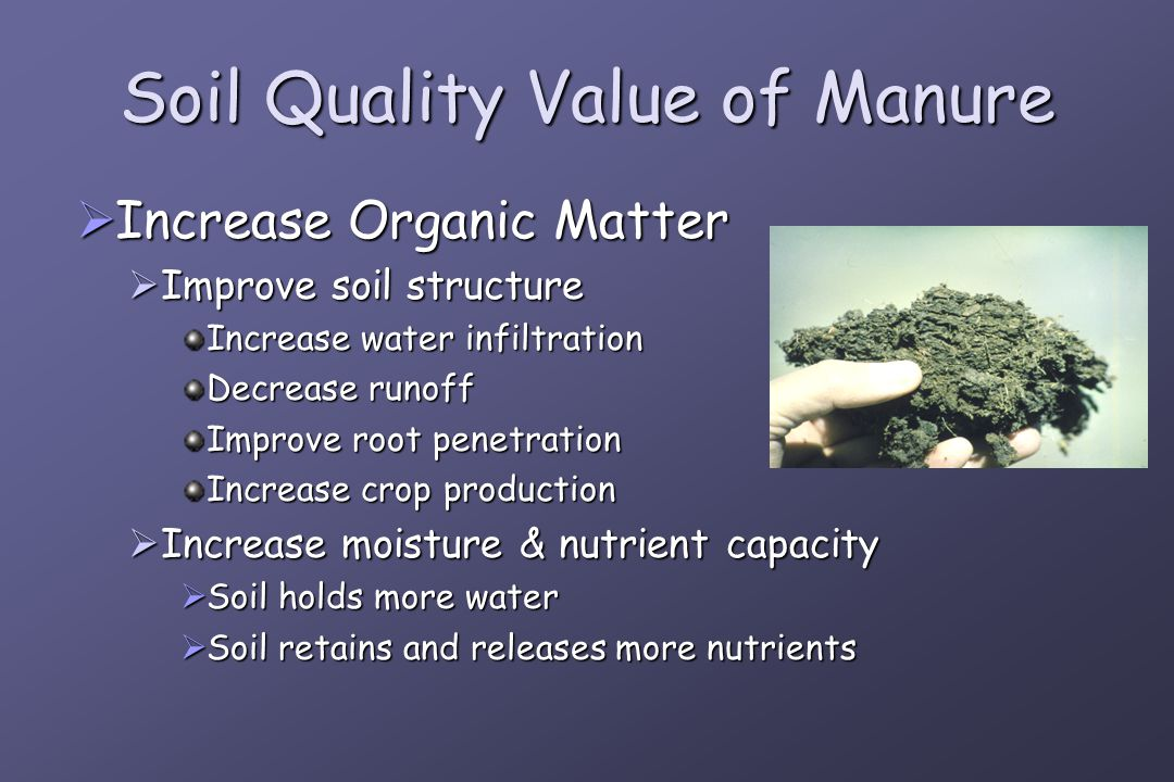 Soil Quality Value of Manure  Increase Organic Matter  Improve soil structure Increase water infiltration Decrease runoff Improve root penetration Increase crop production  Increase moisture & nutrient capacity  Soil holds more water  Soil retains and releases more nutrients