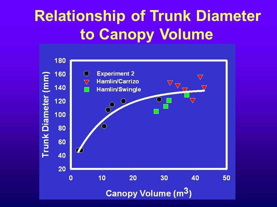 Relationship of Trunk Diameter to Canopy Volume