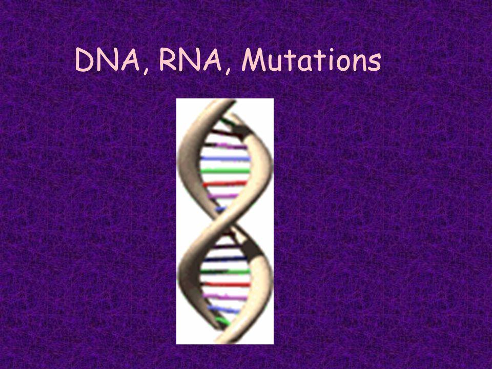 DNA, RNA, Mutations