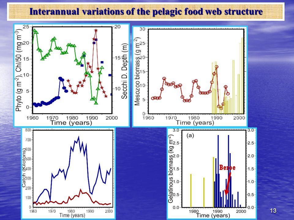 13 Beroe Interannual variations of the pelagic food web structure