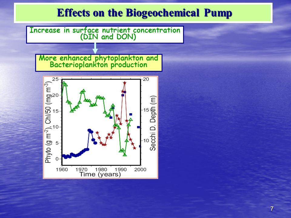 7 Increase in surface nutrient concentration (DIN and DON) More enhanced phytoplankton and Bacterioplankton production Effects on the Biogeochemical Pump Effects on the Biogeochemical Pump
