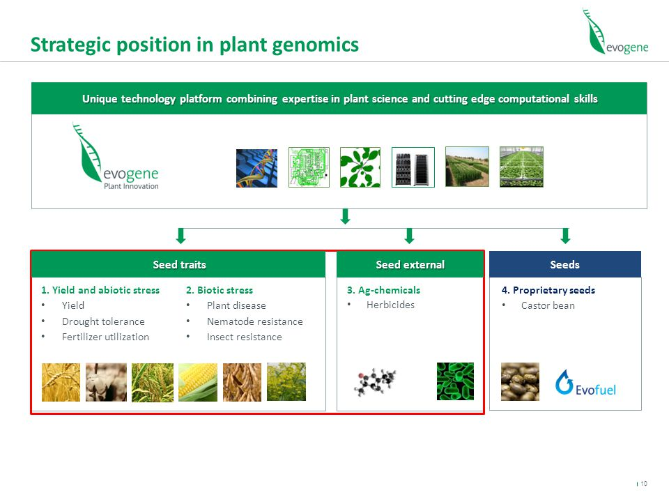 Strategic position in plant genomics 1.