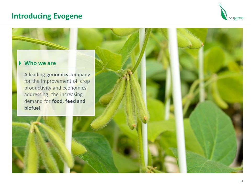 Introducing Evogene Who we are A leading genomics company for the improvement of crop productivity and economics addressing the increasing demand for food, feed and biofuel 4