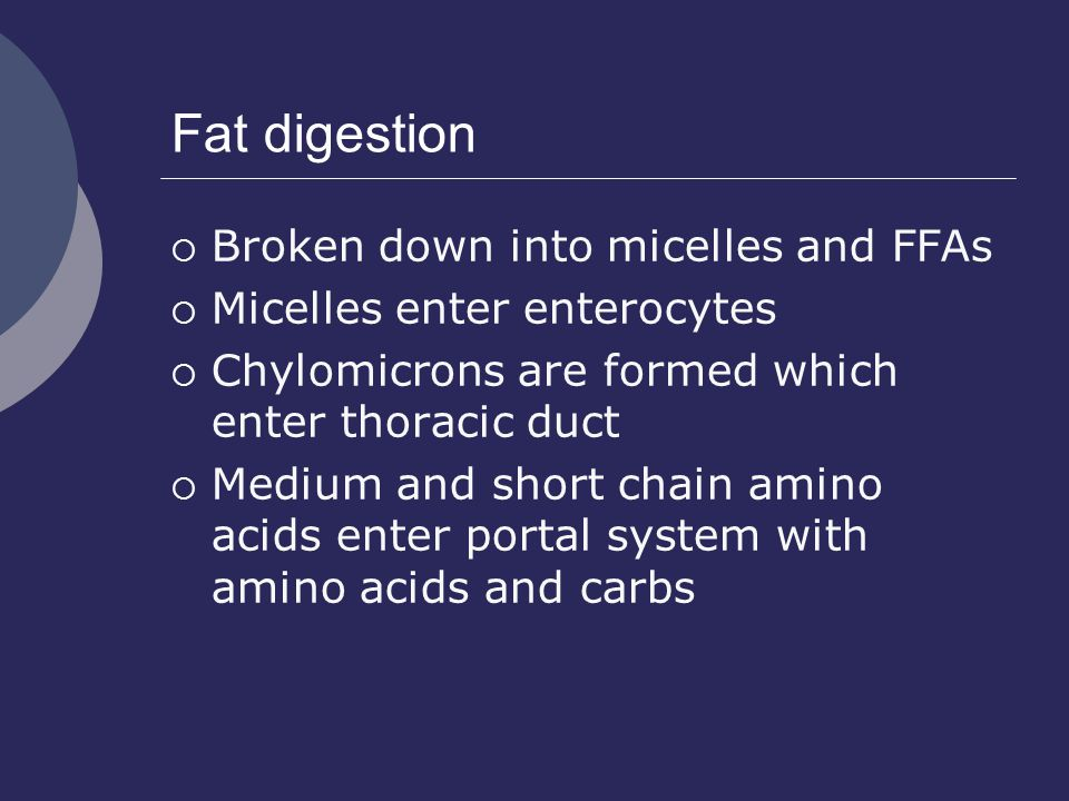 Fat digestion  Broken down into micelles and FFAs  Micelles enter enterocytes  Chylomicrons are formed which enter thoracic duct  Medium and short