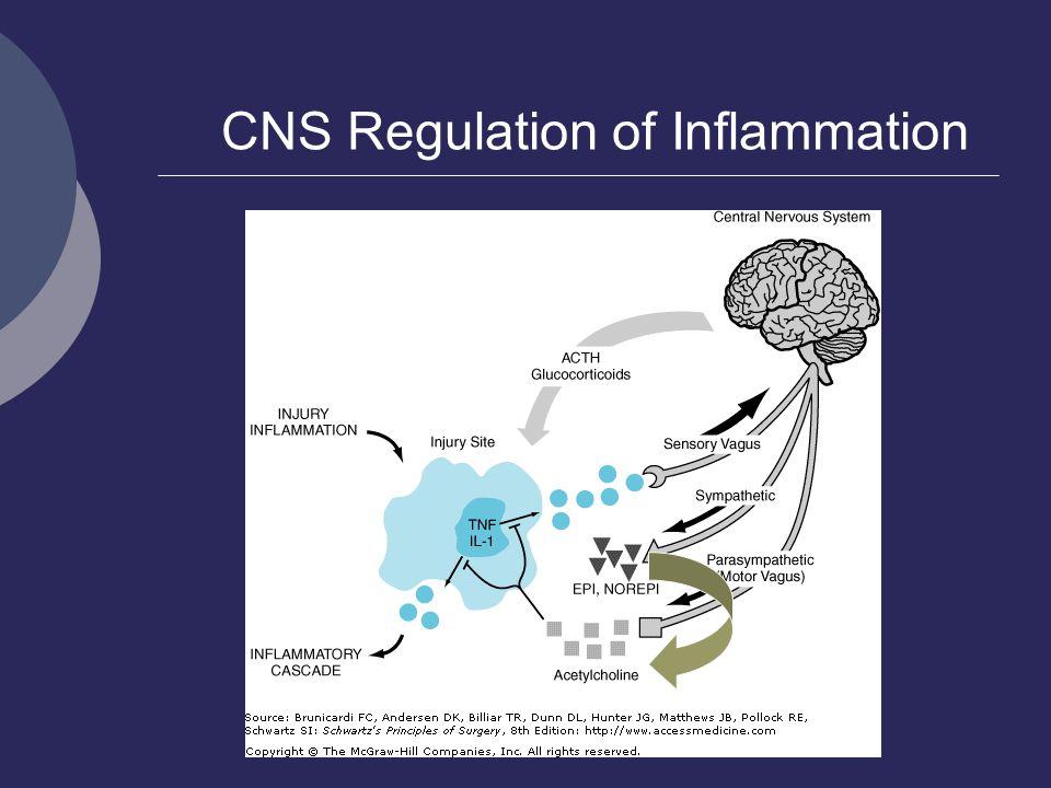 CNS Regulation of Inflammation