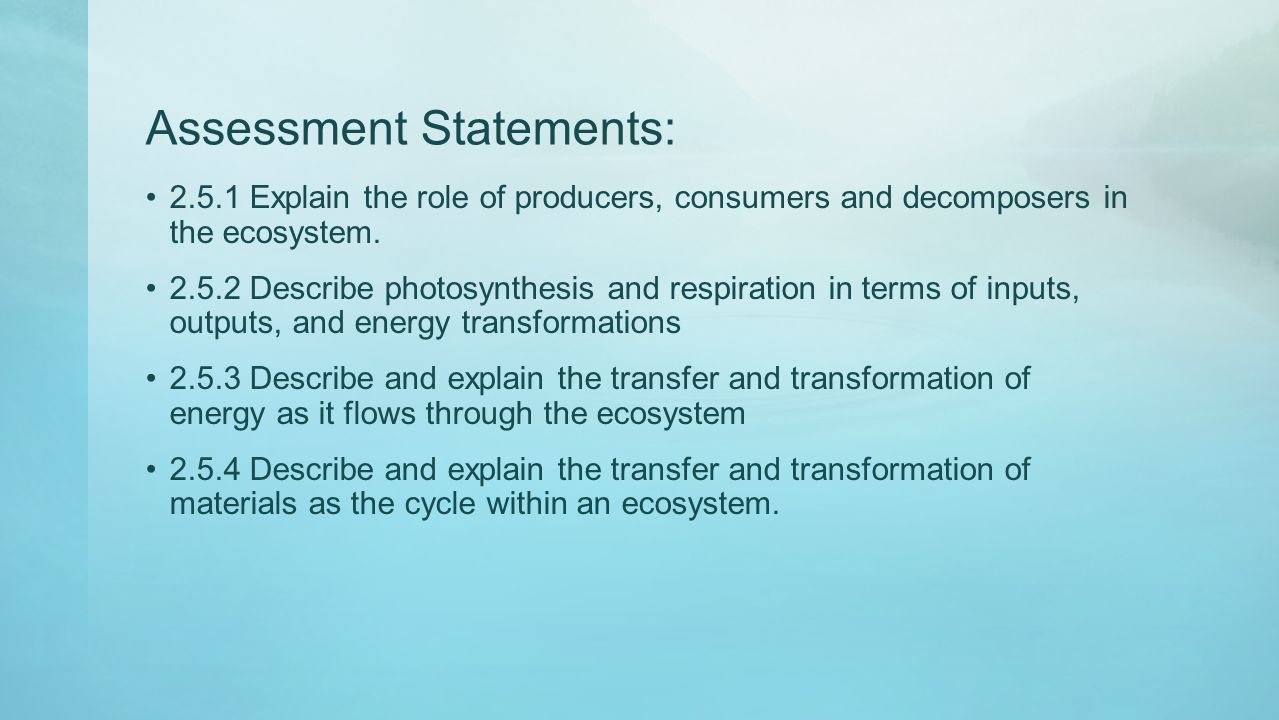 Assessment Statements: 2.5.1 Explain the role of producers, consumers and decomposers in the ecosystem. 2.5.2 Describe photosynthesis and respiration