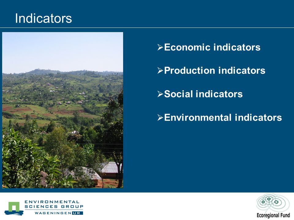 Indicators  Economic indicators  Production indicators  Social indicators  Environmental indicators