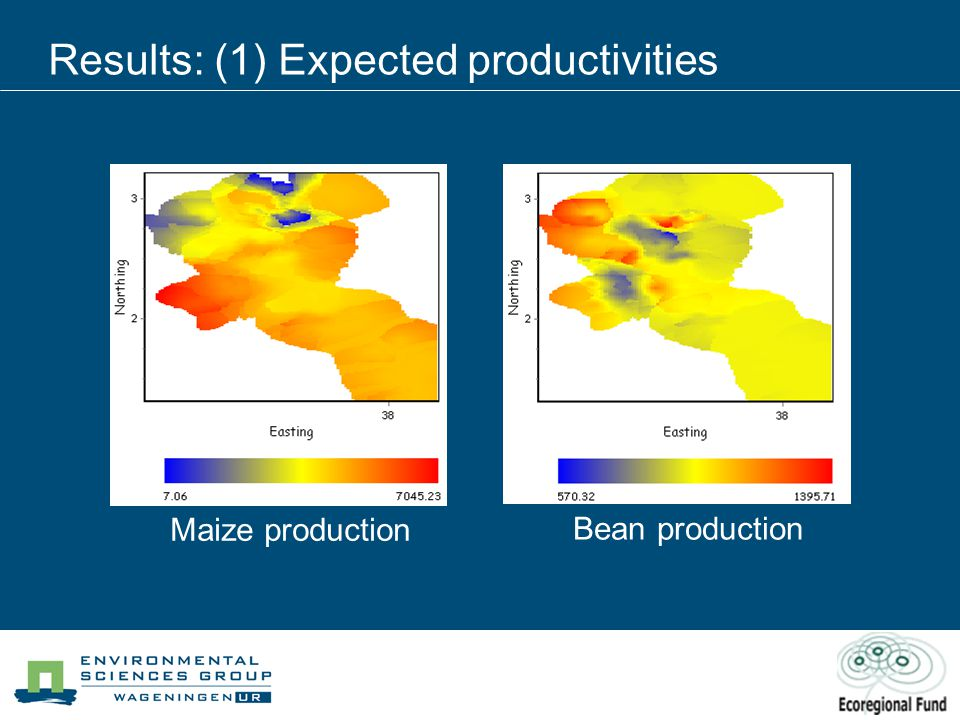 Results: (1) Expected productivities Maize production Bean production