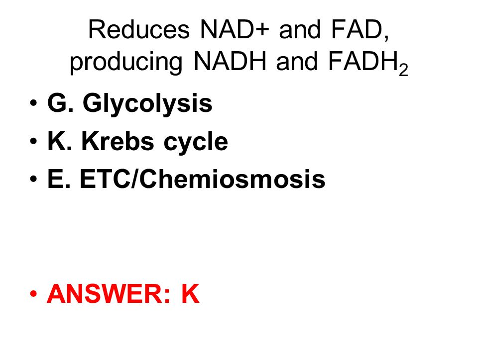 Reduces NAD+ and FAD, producing NADH and FADH 2 G.