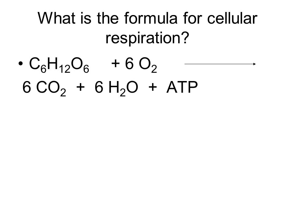 What is the formula for cellular respiration C 6 H 12 O 6 + 6 O 2 6 CO 2 + 6 H 2 O + ATP