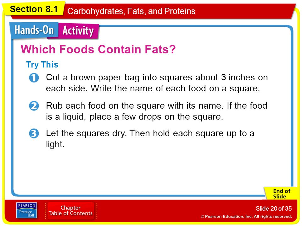 Section 8.1 Carbohydrates, Fats, and Proteins Slide 20 of 35 Which Foods Contain Fats? Let the squares dry. Then hold each square up to a light. Rub e