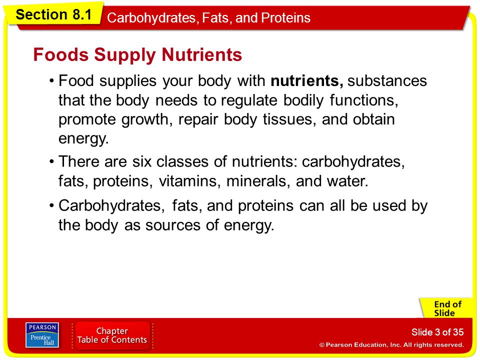 Section 8.1 Carbohydrates, Fats, and Proteins Slide 4 of 35 The foods you eat are your body's energy source.