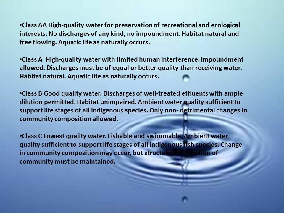 Class AA High-quality water for preservation of recreational and ecological interests. No discharges of any kind, no impoundment. Habitat natural and