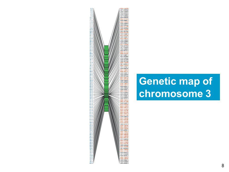 8 Genetic map of chromosome 3