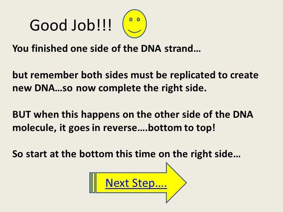 Good Job!!.