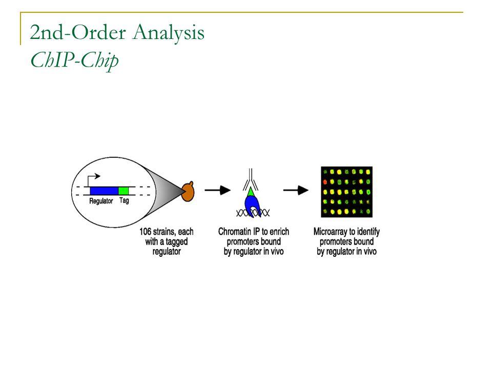 2nd-Order Analysis ChIP-Chip