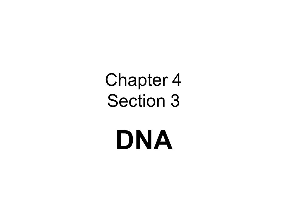 Chapter 4 Section 3 DNA