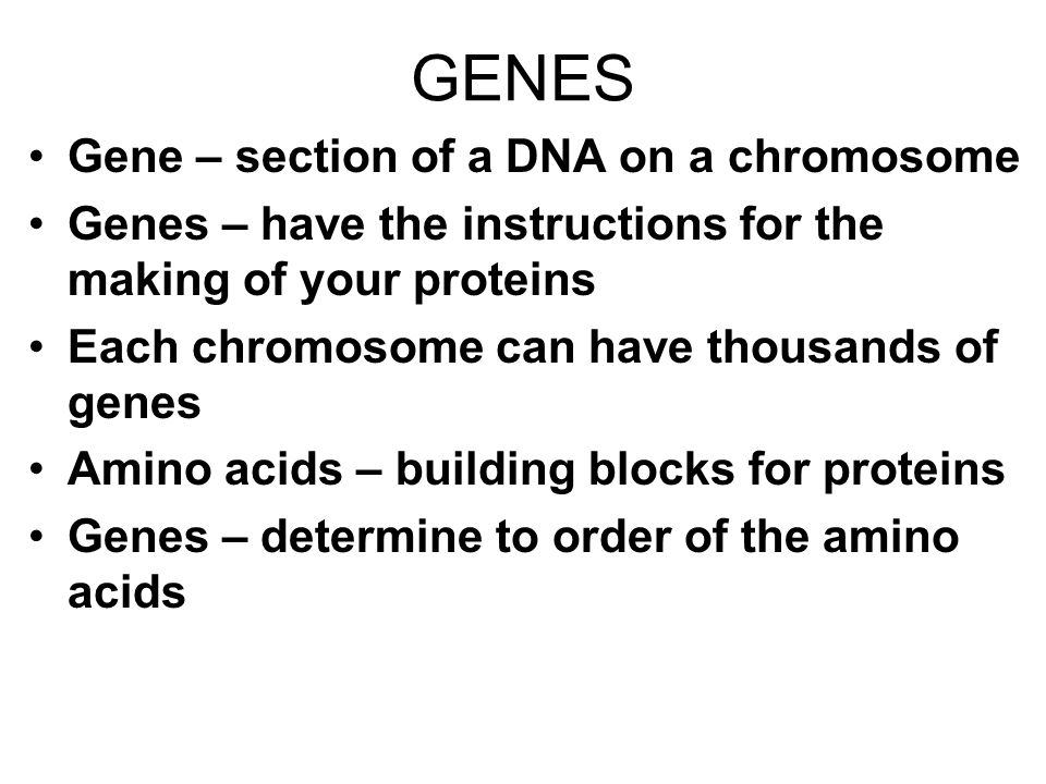 GENES Gene – section of a DNA on a chromosome Genes – have the instructions for the making of your proteins Each chromosome can have thousands of gene