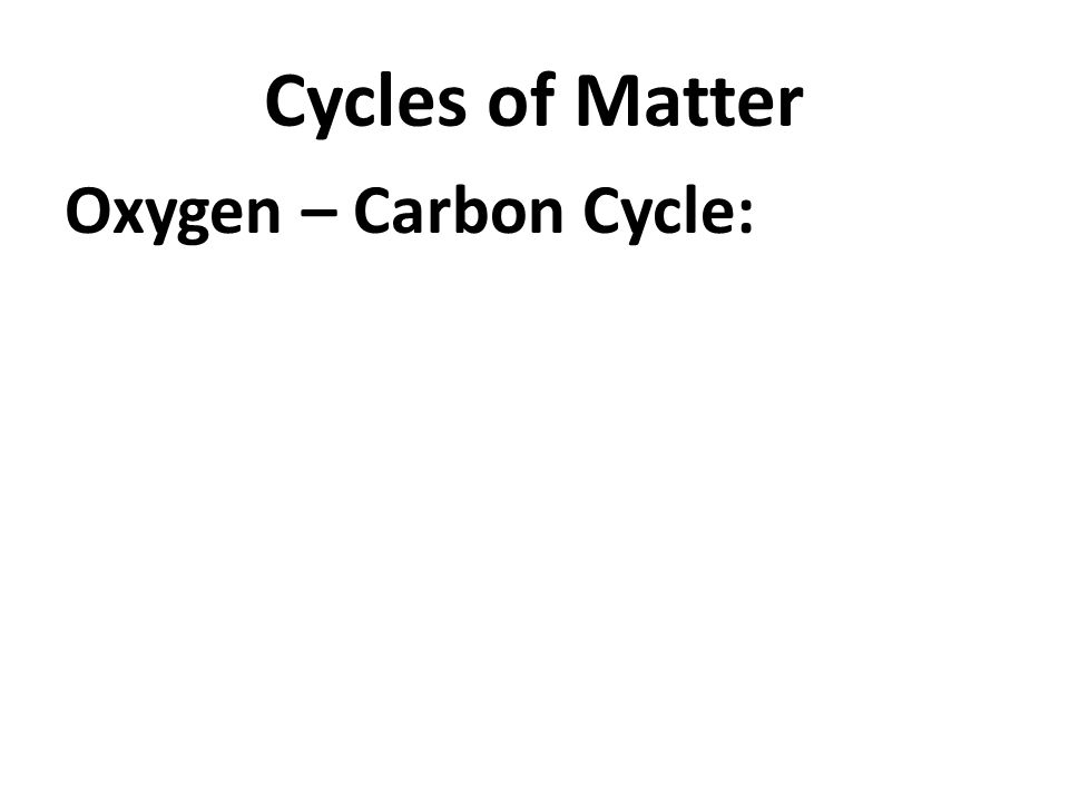 Cycles of Matter Oxygen – Carbon Cycle: