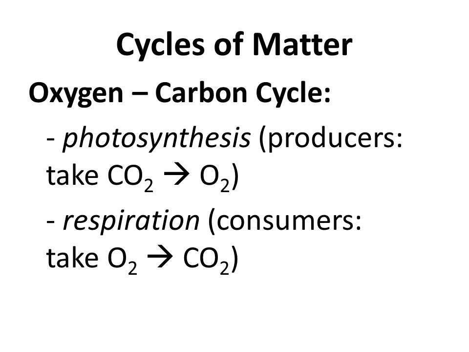 Cycles of Matter Oxygen – Carbon Cycle: - photosynthesis (producers: take CO 2  O 2 ) - respiration (consumers: take O 2  CO 2 )