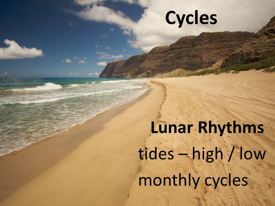 Cycles Lunar Rhythms tides – high / low monthly cycles