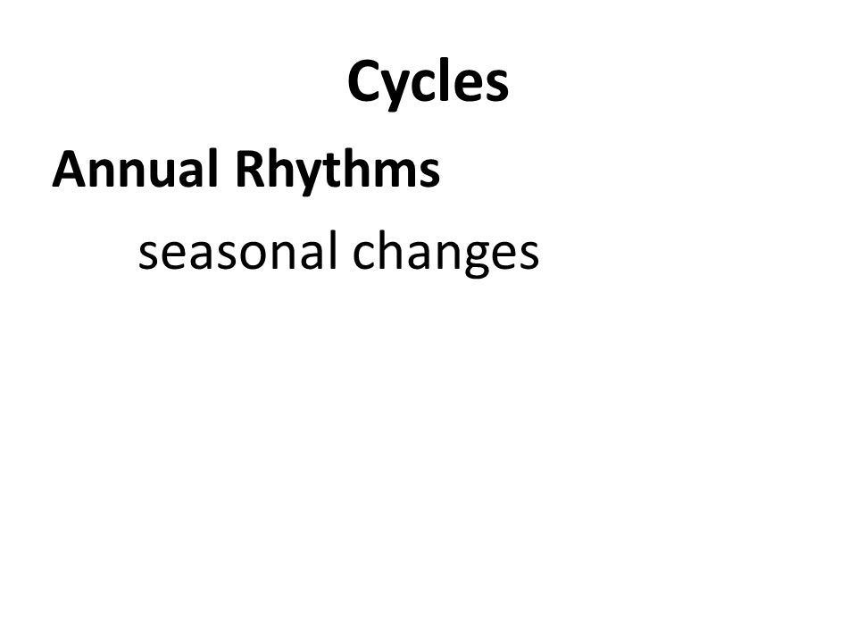 Cycles Annual Rhythms seasonal changes