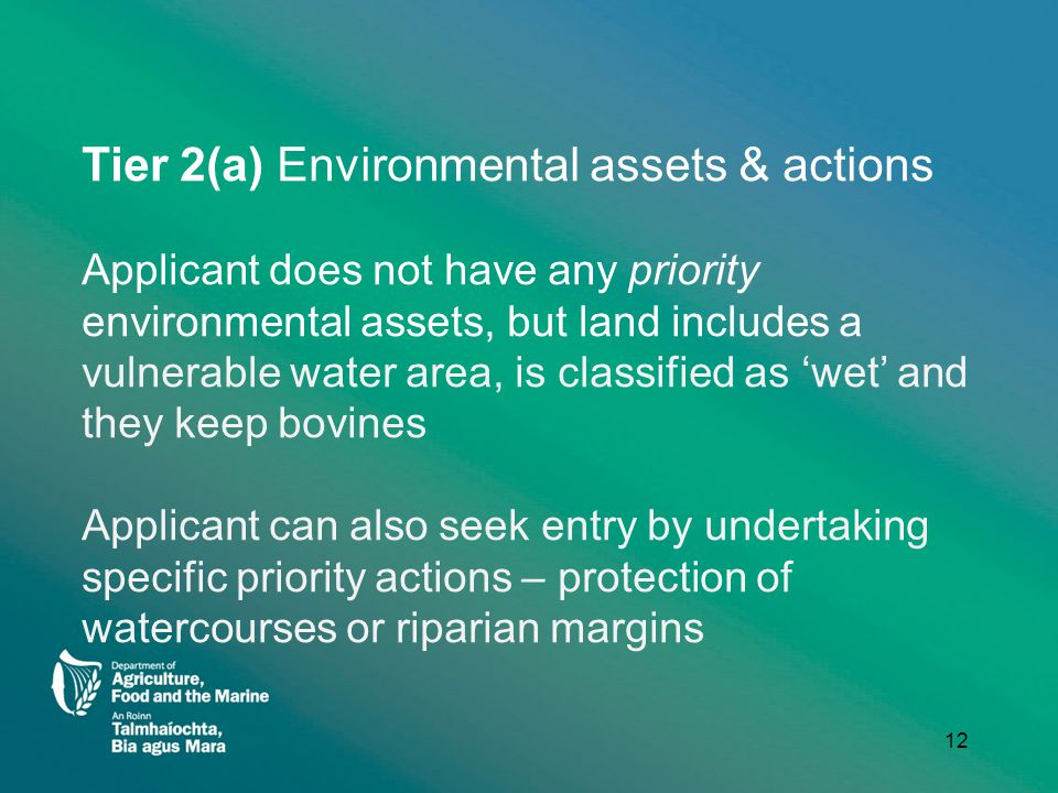 Tier 2(a) Environmental assets & actions Applicant does not have any priority environmental assets, but land includes a vulnerable water area, is classified as 'wet' and they keep bovines Applicant can also seek entry by undertaking specific priority actions – protection of watercourses or riparian margins 12